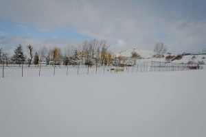 baza-css-brasovia-iarna-ianuarie-2012-1